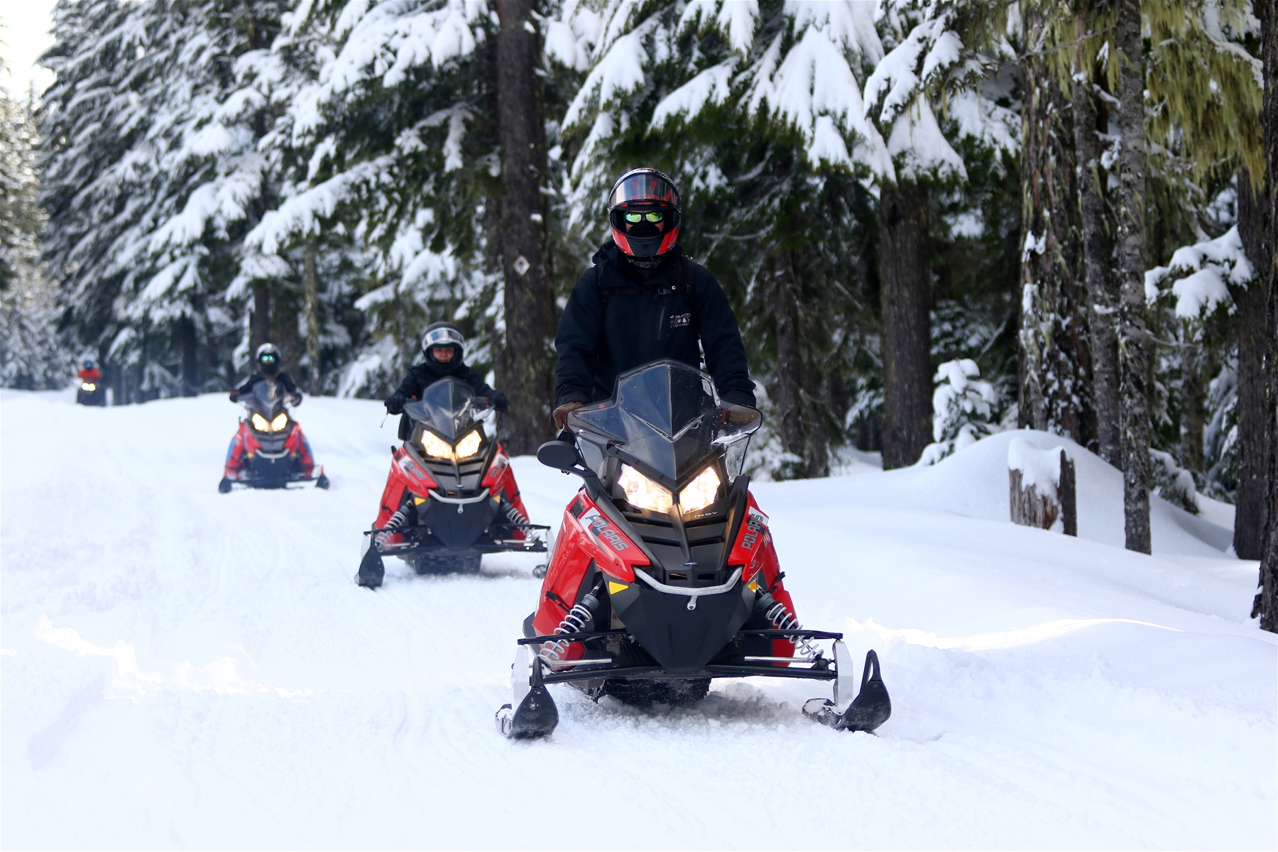 Snowmobiling Tours with Mt. Hood Outfitters