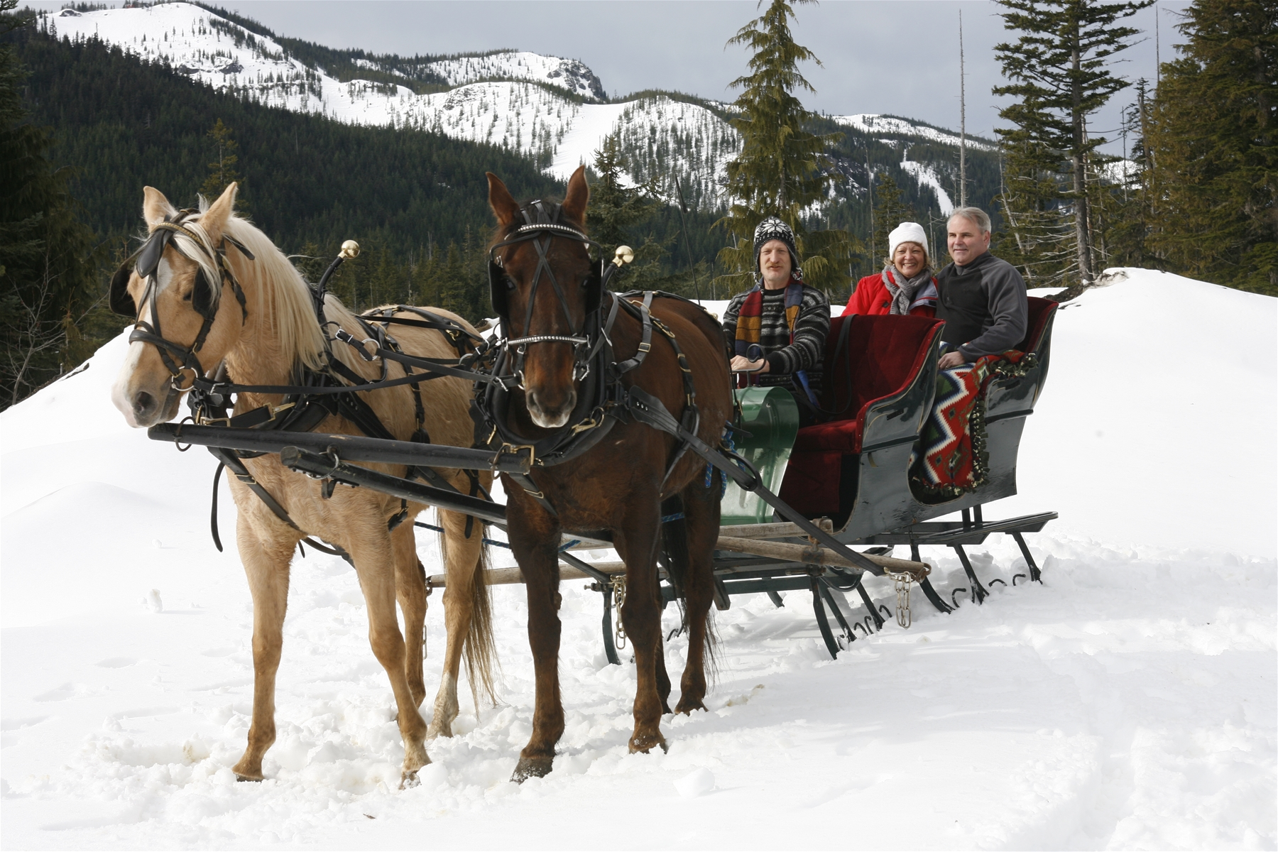 Sleigh Rides with Mt. Hood Outfitters